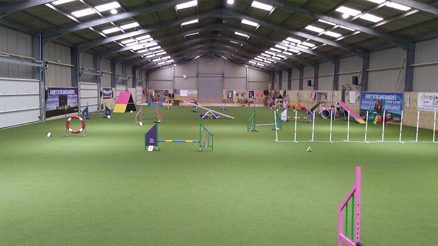 The upgraded training venue at Absolute Dogs