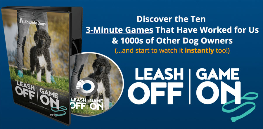 Order the Leash Off Game On DVD