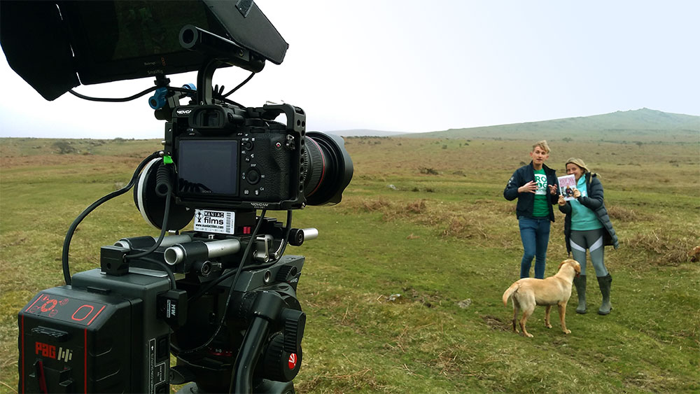 Advert & content filming for Absolute Dogs