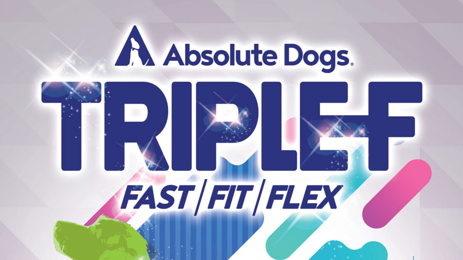 Triple-F dog fitness edit completed for Absolute Dogs