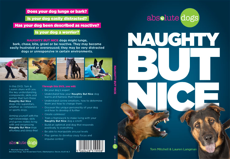 NTSC DVD Authoring & Replication for Absolute Dogs NTSC