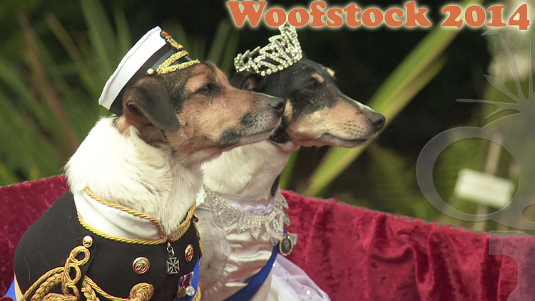 Event Coverage for K9 Focus Woofstock 2014 at Marwood Hill Gardens